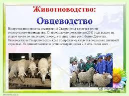 Презентация на тему Презентация к уроку окружающий мир класс  3 Животноводетство