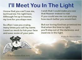 Loss Of A Pet Quotes Beauteous Inspirational Quotes About Losing A Pet Pet Loss Poem Ill Meet You