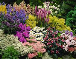 Small Picture Flower Garden Ideas Garden Design Ideas