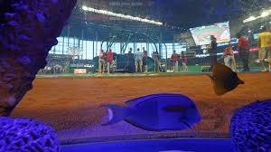 Fish Tank Watch Jt Realmutos Foul Ball Cracks Fish Tank At Marlins Park