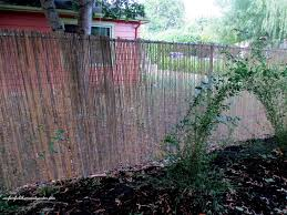 after five foot high chain link fence is softened by the split bamboo fencing
