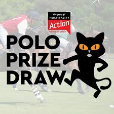 Prize Draw Tickets Prize Draw Win 2 Tickets For Hospitality Actions Charity Polo Day