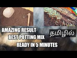 potting mix at home soil mix tamil