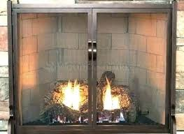 fireplace screens with doors. Elegant Fireplace Screens With Doors Or Screen And