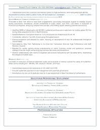 Senior Executive Resume Sample Senior Executive Resume Sample ...