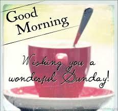 Sunday Good Morning Quotes Best of 24 Sunday Good Morning Wishes