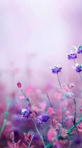 Purple Flowers Aesthetic Wallpaper ...