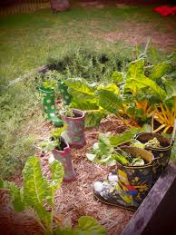Stephanie Alexander Kitchen Garden Program Kitchen Garden Program Clovelly Child Care Centre