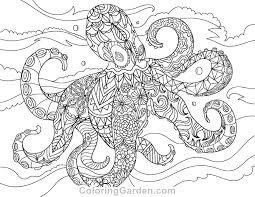 Small Picture Adult Coloring Page