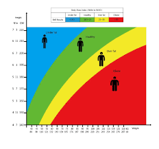 Bmi Calculator And Bmi Chart To Find Your Body Mass Indexmealpro