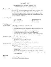 Van Driver Sample Resume Podarki Co