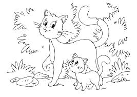 Kleurplaat Kat En Kitten Afb 22643 Images