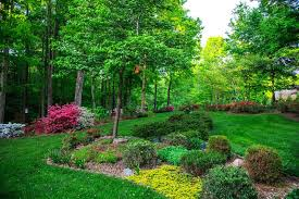 every garden tells a story they retain a history rose bushes or irises planted by a family member long ago species of plants that thrived here when the