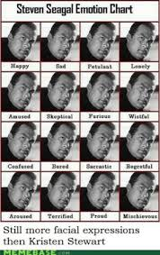 Steven Seagal Emotion Chart Poster 25 Best Steven Seagal Meme Memes Emotion Chart Memes