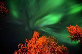 Forecast Northern Lights Alaska Tonights Forecast Kp 2 Aurora Borealis Aurora Tonights