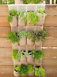 Small Picture Hanging Vegetable Garden Gardening Ideas