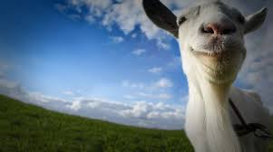 open goat simulator in bluestacks