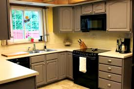 Gray Painted Kitchen Cabinets Bathroom Remarkable Shaker Grey Kitchen Cabinets Ship Everywhere