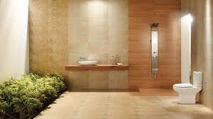 bathroom pictures. View Bathroom Floor Tiles Wall Johnson Website Pictures I