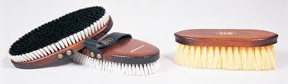 How to <b>Clean Horse</b> Brushes | Dover Saddlery