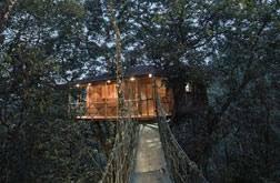 tree house resort. Vythiri Resorts - Tree House Resort