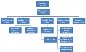 Simplified Health Care Organizational Chart Download