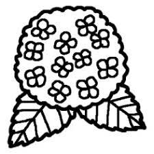 アジサイ紫陽花白黒夏花植物の無料イラストミニカット