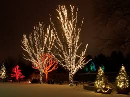outdoor tree lighting ideas. Full Size Of Accessories:christmas Light Stakes Large White Led Christmas Lights Ideas Outdoor Tree Lighting