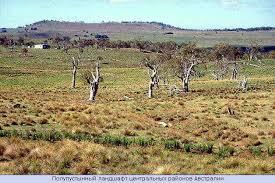 География материка Австралия карта Австралии Географическое  Полупустынный ландшафт центральных районов Австралии