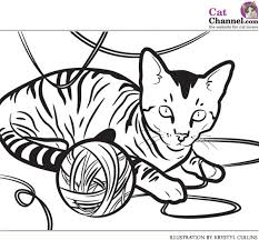 Small Picture House Cat Coloring Pages Coloring Pages