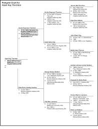 pedigree tree the gift of an organized family tree organized for life