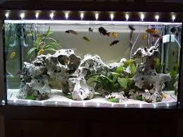 aquarium diy decor diy aquarium decoration ideas on fish tank decorations with incredible ideas