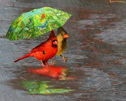 Image result for cute character singing in the rain with umbrella