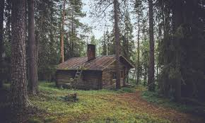cabin camping in the woods. Camping-ghost-stories3 Cabin Camping In The Woods