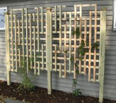 Small Picture Trellis Panel Pictures and Ideas Denniss garden Pinterest