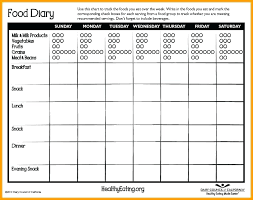 eating log toddler daily report a preschool food diary template journal