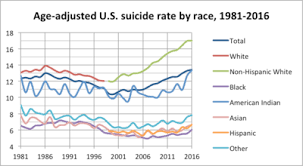 Suicide In The United States Wikipedia