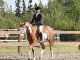 Horse Programming Alaska 4 H