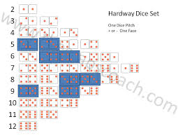 Hardway Dice Set