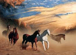 wild horses wild horses with images pianogirl14madf storify