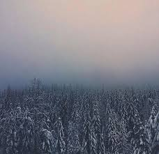 nature backgrounds tumblr. Aesthetic, Alternative, Background, Beautiful, Grunge Nature Backgrounds Tumblr Pale