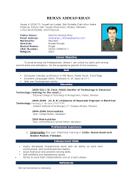 Resume Format Word Resume Example