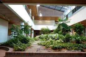 Eco friendly corporate office Staircase Environmentally Friendly Work Place Bt Office Furniture Grow Green Bonsai