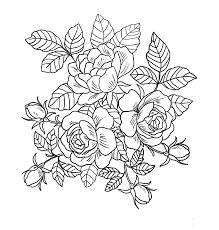 Tranh tô màu hoa