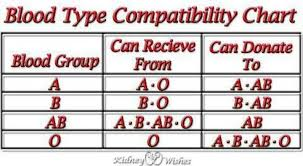 Blood Type Donor Compatibility Chart Blood Type Compatibility Chart Provided You Know Everyones