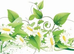 design mint green wedding invitation