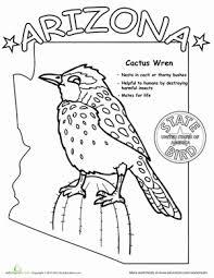 arizona state bird life science arizona state bird worksheet education com on states worksheets