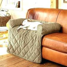 best couch for cats leather couch protector best couch for cats fantastic couch protectors for cats
