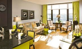 lime green and brown living room 1025thepartycom