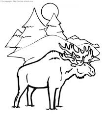 excellent winter animal coloring pages animals page free printable pertaining to coloring pages winter animals for